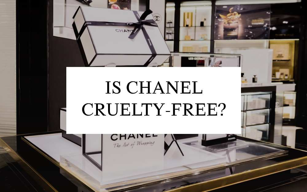Is CHANEL Cruelty-Free in 2021?