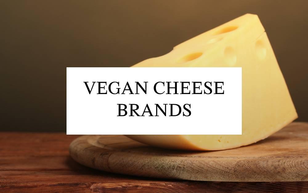 10 Vegan Cheese Brands – Healthy, Delicious & Cruelty-Free